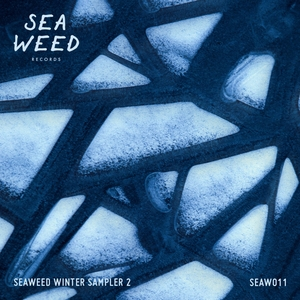 VARIOUS - Seaweed Winter Sampler 2