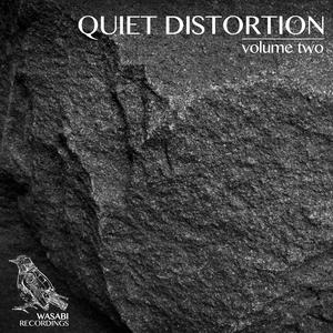VARIOUS - Quiet Distortion Vol 2