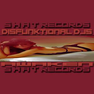 DISFUNKTIONAL DJS - Awaken