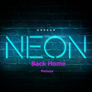 MELOSYS - Back Home