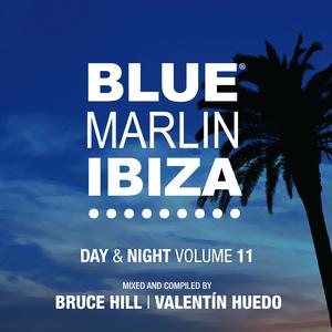 BRUCE HILL/VALENTIN HUEDO/VARIOUS - Blue Marlin Ibiza (unmixed tracks)