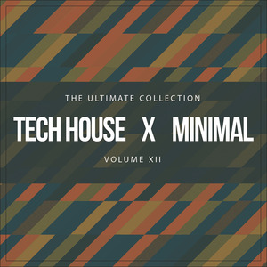 VARIOUS - Tech House X Minimal Vol XII