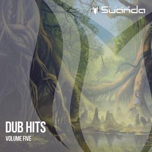 VARIOUS - Dub Hits Vol 5