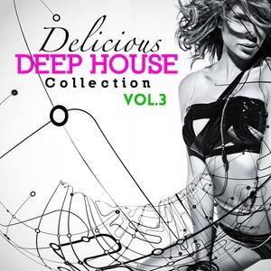 VARIOUS - Delicious Deep House Collection Vol 3