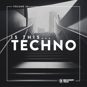 VARIOUS - Is This Techno? Vol 24