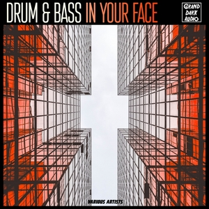 VARIOUS - Drum & Bass In Your Face