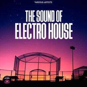 VARIOUS - The Sound Of Electro House