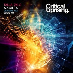 TALLA 2XLC - Arcadia