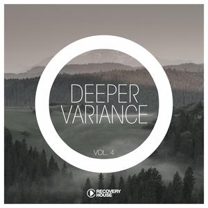 VARIOUS - Deeper Variance Vol 4