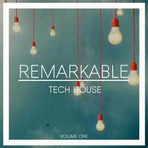 VARIOUS - Remarkable Tech House Vol 1