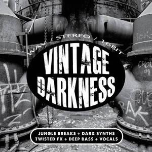 DIGITAL 6 - Vintage Darkness (Sample Pack WAV)