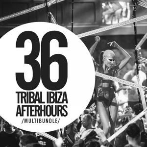 VARIOUS - 36 Tribal Ibiza Afterhours Multibundle