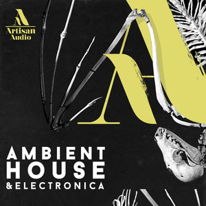 ARTISAN AUDIO - Ambient House & Electronica (Sample Pack WAV)