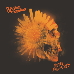 BARNS COURTNEY - Golden Dandelions