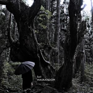 WASRANDOM - Soil