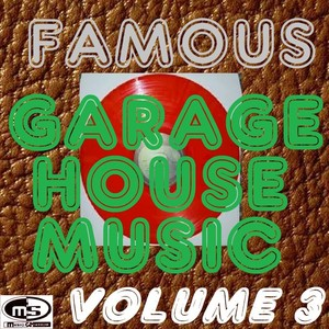 VARIOUS - Famous Garage House Music Vol 3 (DJ Megamix)