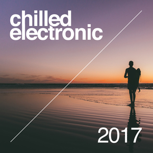 VARIOUS - Chilled Electronic