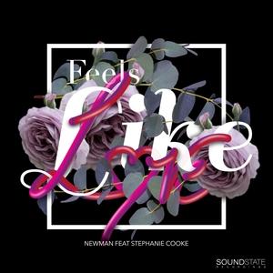 NEWMAN feat STEPHANIE COOKE - Feels Like Love