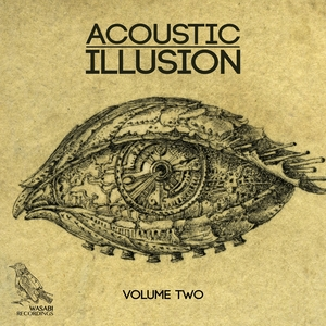 VARIOUS - Acoustic Illusion Vol 2