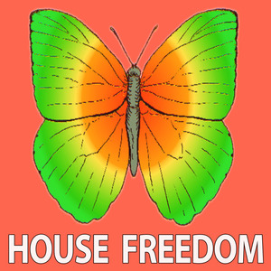 21 ROOM/BUNNY HOUSE/BIG BUNNY - Confirm