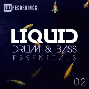 VARIOUS - Liquid Drum & Bass Essentials Vol 02