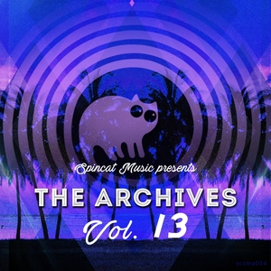 VARIOUS - The Archives Vol 13