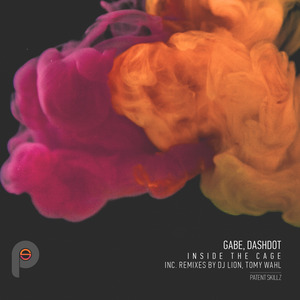 GABE/DASHDOT - Inside The Cage