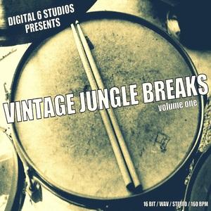 DIGITAL 6 - Vintage Jungle Breaks Vol 1 (Sample Pack WAV)