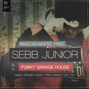 BINGOSHAKERZ - Sebb Junior: Funky Garage House (Sample Pack WAV)