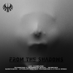 A.B/TRANSCEND/HEDONISTIK RITUAL/SUBSTANCED - From The Shadows