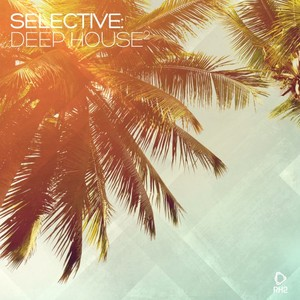 VARIOUS - Selective: Deep House Vol 2