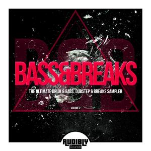 VARIOUS - Bass & Breaks (The Ultimate Drum & Bass, Dubstep & Breaks Sampler) Vol 2