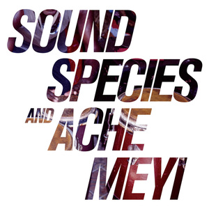 SOUNDSPECIES & ACHE MEYI - Meme