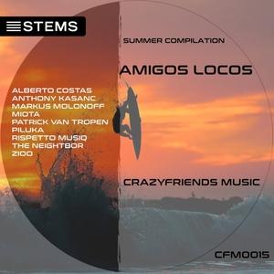 VARIOUS - Amigos Locos