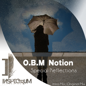 OBM NOTION - Special Reflections