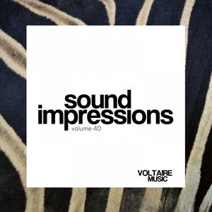 VARIOUS - Sound Impressions Vol 40