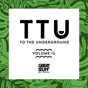 DJ SMILK/ALVARO SMART/ALEX CRISTEA/SACCAO/VAN DOPE/DJ WADY/DVIT BOUSA/MARIO FRANCA - To The Underground, Vol  13