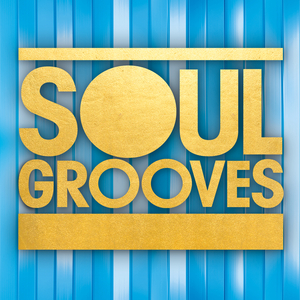 VARIOUS - Soul Grooves
