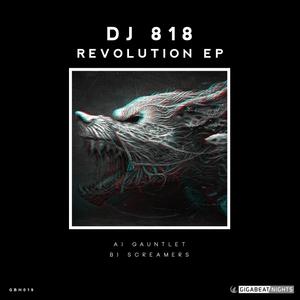 DJ 818 - Revolution EP