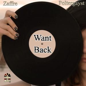 POLTERGAYST/ZAFFRE - Want Back