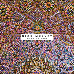 NICK MULVEY - Wake Up Now