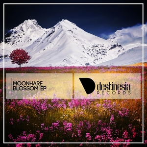 MOONHARE - Blossom EP
