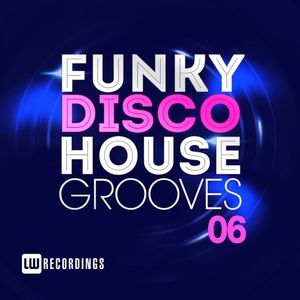 VARIOUS - Funky Disco House Grooves Vol 06