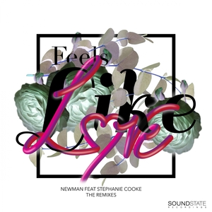 NEWMAN feat STEPHANIE COOKE - Feels Like Love: The Remixes