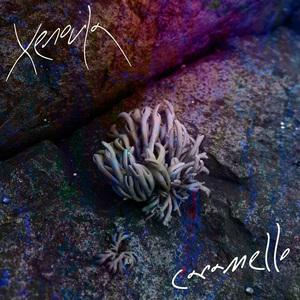 XENOULA - Caramello