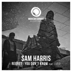 SAM HARRIS - Regret/You Don't Know
