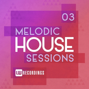 VARIOUS - Melodic House Sessions Vol 3