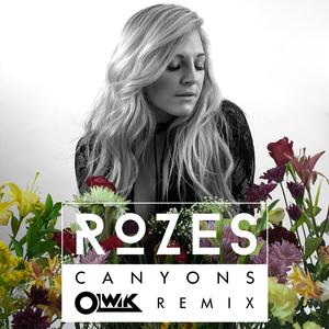 ROZES - Canyons (OLWIK Remix)