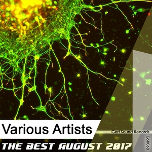 VARIOUS - The Best August 2017