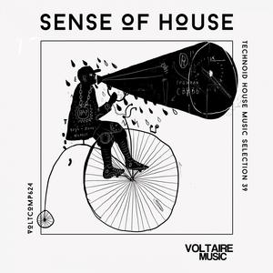 VARIOUS - Sense Of House Vol 39